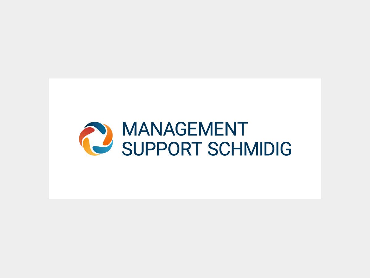Logo Management Support Schmidig